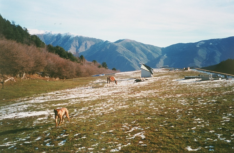 Centre de Natura i Desenvolupament Sostenible dels Pirineus