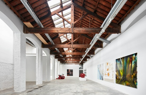 Carles Taché Gallery