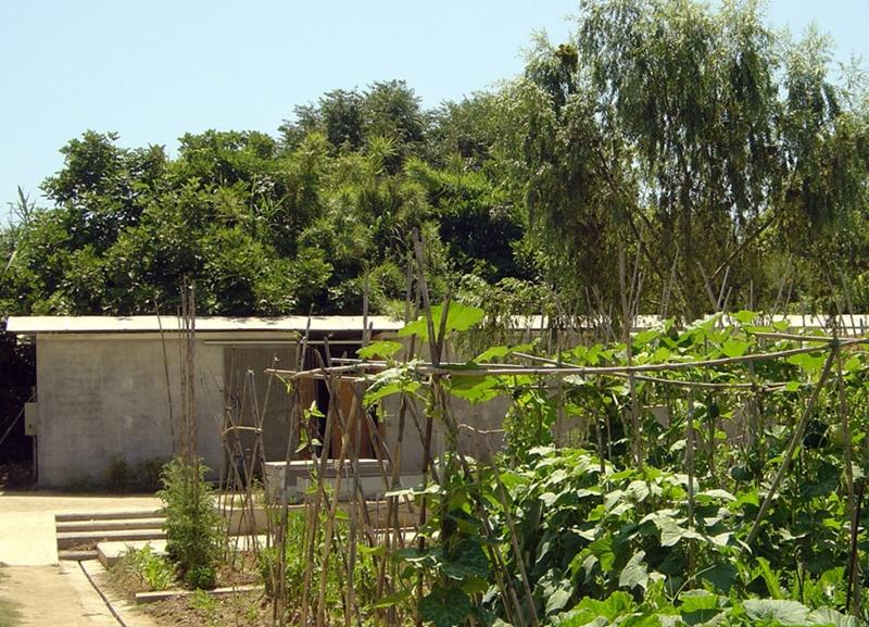 Projecte d'Horts Lúdics Municipals al Camí de la Bunyola